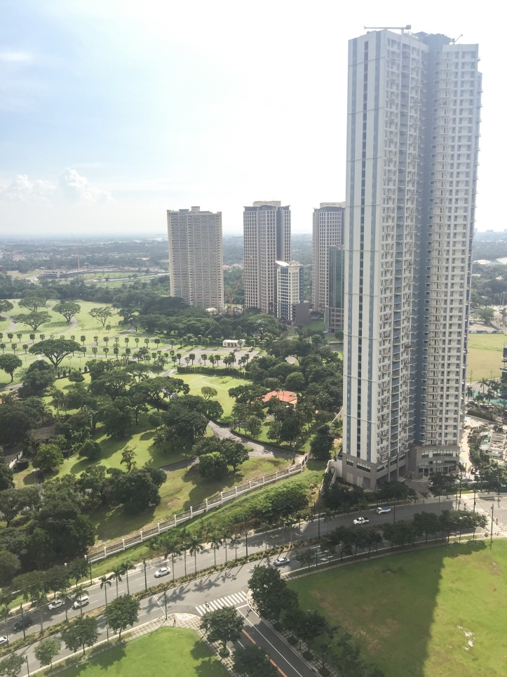 9.SOMA View